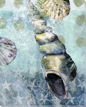 Beachcombing Shell 1 Wrapped Canvas Giclee Print Wall Art