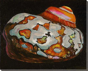 Colorful Moon Shell 2 Wrapped Canvas Giclee Print Wall Art