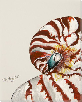 Nautilus Shell Side View Watercolor Wrapped Canvas Giclee Print