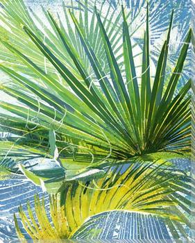 Blackbeard's Palm 4 Wrapped Canvas Giclee Print Wall Art