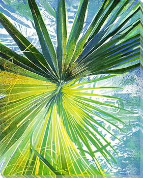 Blackbeard's Palm 5 Wrapped Canvas Giclee Print Wall Art