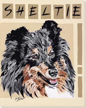 Sheltie Dog Wrapped Canvas Giclee Print Wall Art