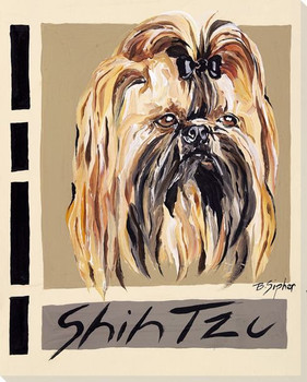 Shih Tzu Dog Wrapped Canvas Giclee Print Wall Art