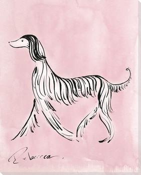 B&W Afgan Dog Wrapped Canvas Giclee Print Wall Art