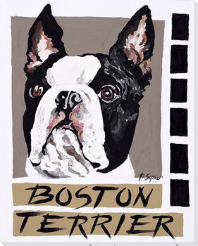 Boston Terrier Dog Wrapped Canvas Giclee Print Wall Art