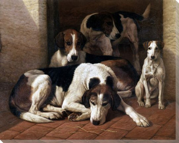 Foxhounds and a Terrier Dog Wrapped Canvas Giclee Print Wall Art
