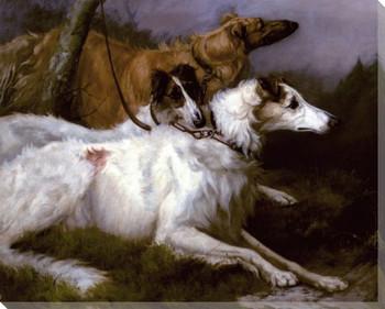 Three Dogs on Leash, Korotai, Zeneitra and Piolla Wrapped Canvas Print