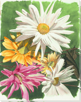 Daisy Flowers Wrapped Canvas Giclee Print Wall Art