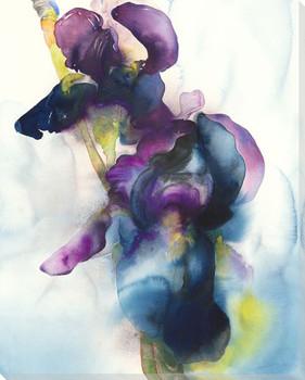 Smoke Iris Flower Wrapped Canvas Giclee Print Wall Art