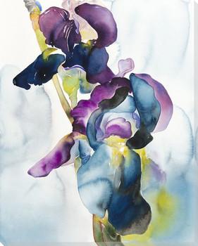 Prisma Iris Flowers Wrapped Canvas Giclee Print Wall Art
