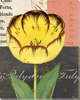 Floricultural Cabinet 1835 Flower 1 Wrapped Canvas Giclee Art Print