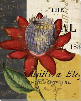 Floricultural Cabinet 1835 Flower 3 Wrapped Canvas Giclee Art Print