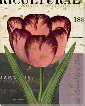 Floricultural Cabinet 1835 Flower 8 Wrapped Canvas Giclee Art Print