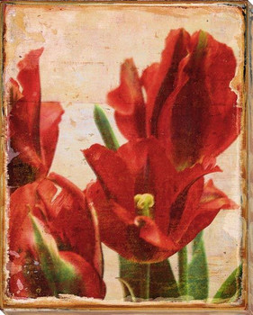 Bright Red Tulip Flowers Wrapped Canvas Giclee Print Wall Art