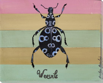 Weevils Bug Wrapped Canvas Giclee Print Wall Art