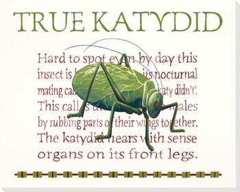 True Katydid Wrapped Canvas Giclee Print Wall Art