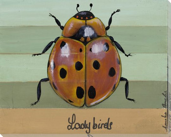 Ladybirds Bug Wrapped Canvas Giclee Print Wall Art