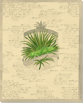 Green Grasshopper Wrapped Canvas Giclee Print Wall Art