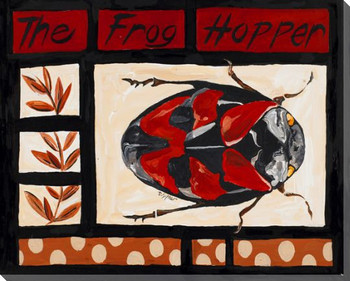 The Frog Hopper Bug Wrapped Canvas Giclee Print Wall Art