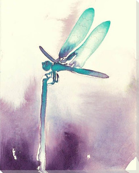 Everglades Dragonfly Wrapped Canvas Giclee Print Wall Art