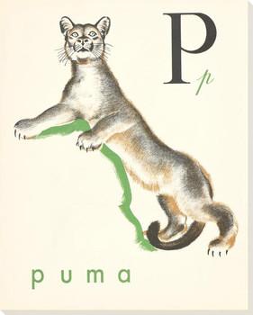 P. Puma Wrapped Canvas Giclee Print Wall Art