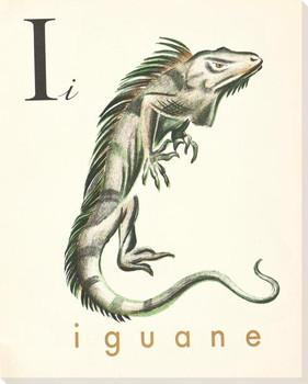 I. Iguane Wrapped Canvas Giclee Print Wall Art