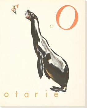 O. Otarie Wrapped Canvas Giclee Print Wall Art