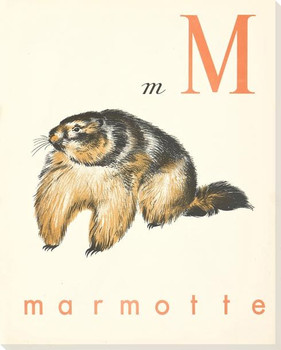 M. Marmotte Wrapped Canvas Giclee Print Wall Art