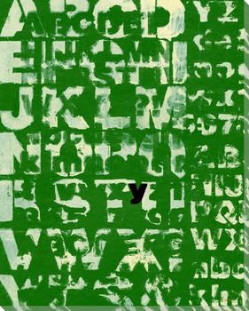 Green Why? with Letter Y Wrapped Canvas Giclee Print Wall Art