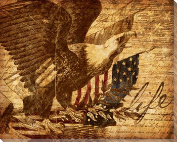 Right of Life Eagle with Flag Wrapped Canvas Giclee Print Wall Art