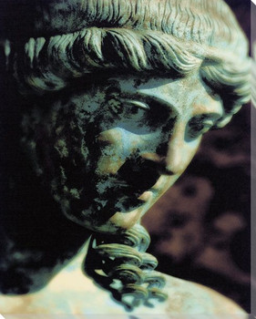Pompeii Portrait Wrapped Canvas Giclee Print Wall Art