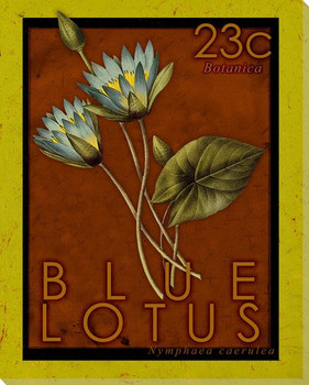 Blue Lotus Stamp Wrapped Canvas Giclee Print Wall Art