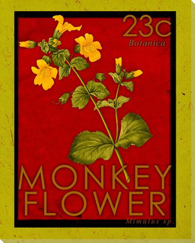 Monkey Flower Stamp Wrapped Canvas Giclee Print Wall Art