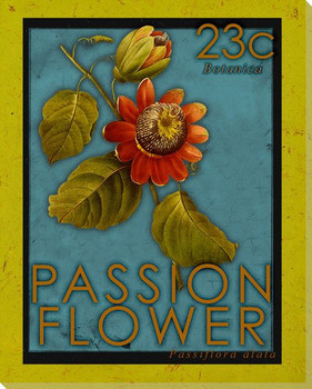 Passion Flower Stamp Wrapped Canvas Giclee Print Wall Art