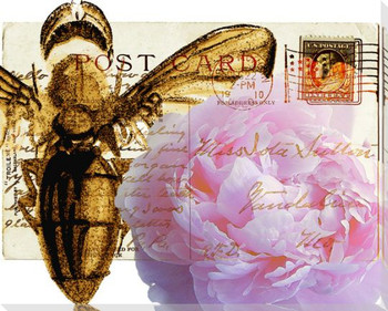 Bees Butterflies & Postcards IV Wrapped Canvas Giclee Print Wall Art