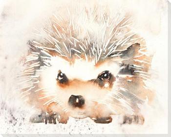 Hedgehog Wrapped Canvas Giclee Art Print Wall Art