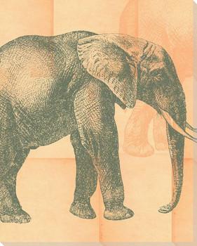 Silk Elephant Wrapped Canvas Giclee Print Wall Art