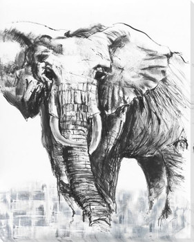 Elephant Study Wrapped Canvas Giclee Print Wall Art