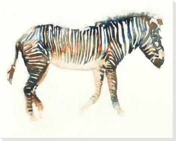 Walking Zebra Wrapped Canvas Giclee Art Print Wall Art