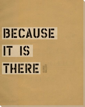 Because it is There Saying Wrapped Canvas Giclee Print Wall Art