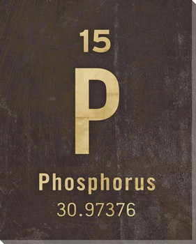 Phosphorus - Periodic Table of Elements Wrapped Canvas Print