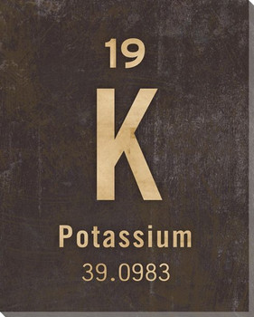 Potassium - Periodic Table of Elements Wrapped Canvas Giclee Art Print