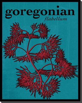 Goregonian Wrapped Canvas Giclee Print Wall Art