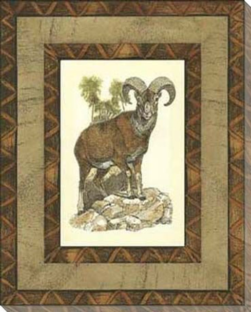 Printed Rustic Big Horn Sheep Wrapped Canvas Giclee Print Wall Art