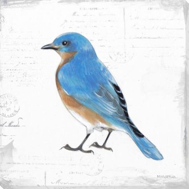 Bird Watcher IV Wrapped Canvas Giclee Print Wall Art