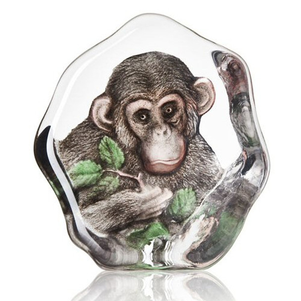 Eating Our Way Through Wisconsin Film 7228 >> Chimpanzee Clear Etched Painted Crystal Sculpture By Mats Jonasson