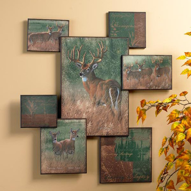 Natures Plan Whitetail Deer Wall Collage Wall Art Wildlife Wall