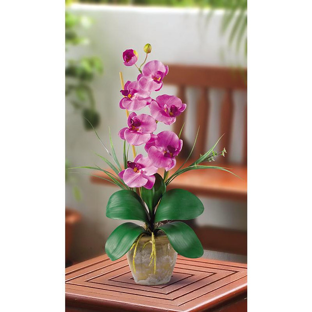 Single Stem Phalaenopsis Silk Orchids - Mauve