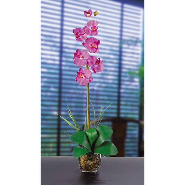 Single Phalaenopsis Liquid Illusion Silk - Orchid