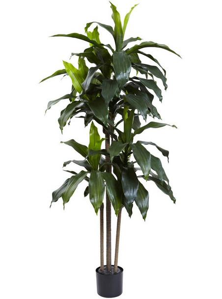 5' Dracaena Silk Tree UV Resistant, Indoor Outdoor